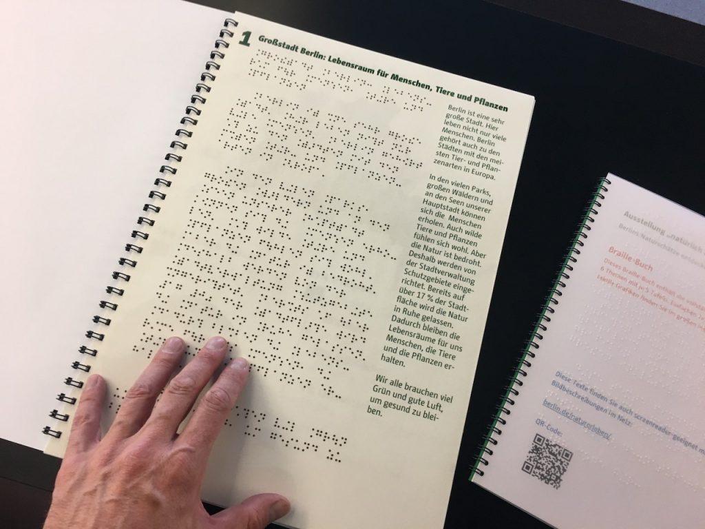 Einfache Sprache und Braille als Ergänzung in einem Buch